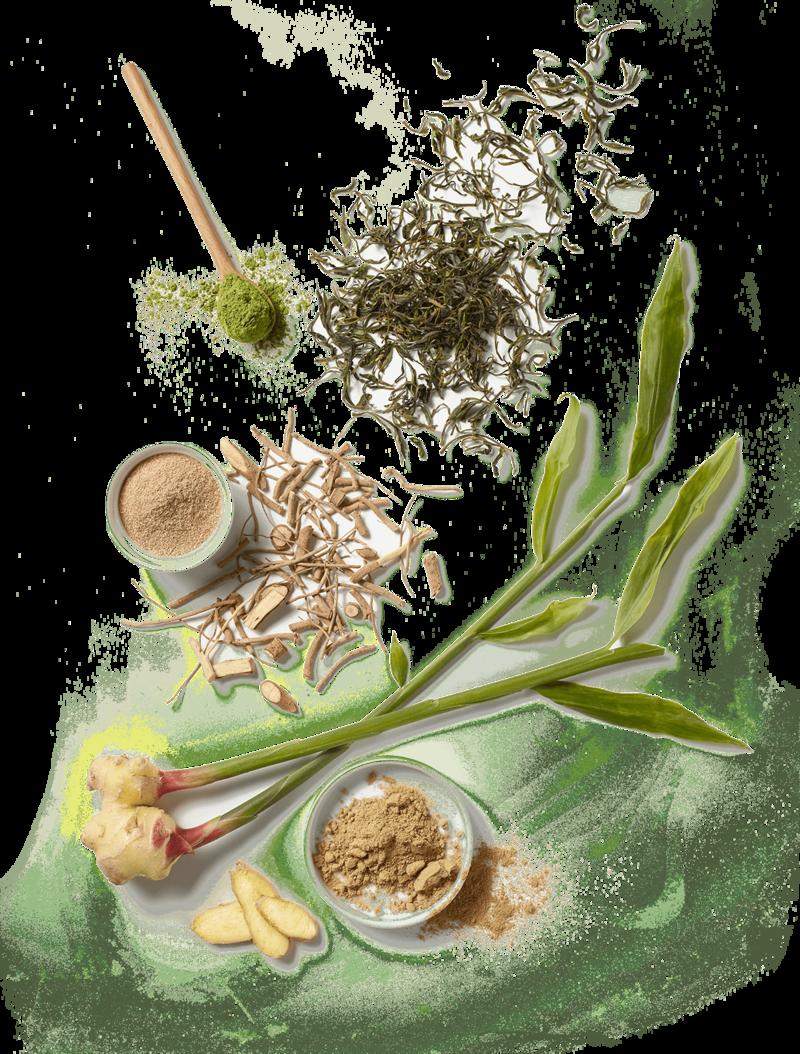 Display of Green Tea Powder, Ashwaganda, and Ginger