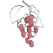 grape-seed proanthocyanidins
